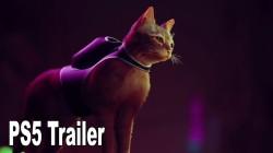Анонсирована киберпанк адвенчура про бродячего кота Stray для PS5