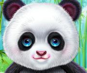 Cute Panda Dentist Care - Лечим панду