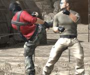 Real Strike Tiger Fighting: Реальные драки