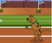 Scooby-Doo Hurdle Race: Скуби Ду: бег с препятствиями