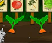 Marly Mouse Escape - Garden: Марли Маус в побеге - Сад