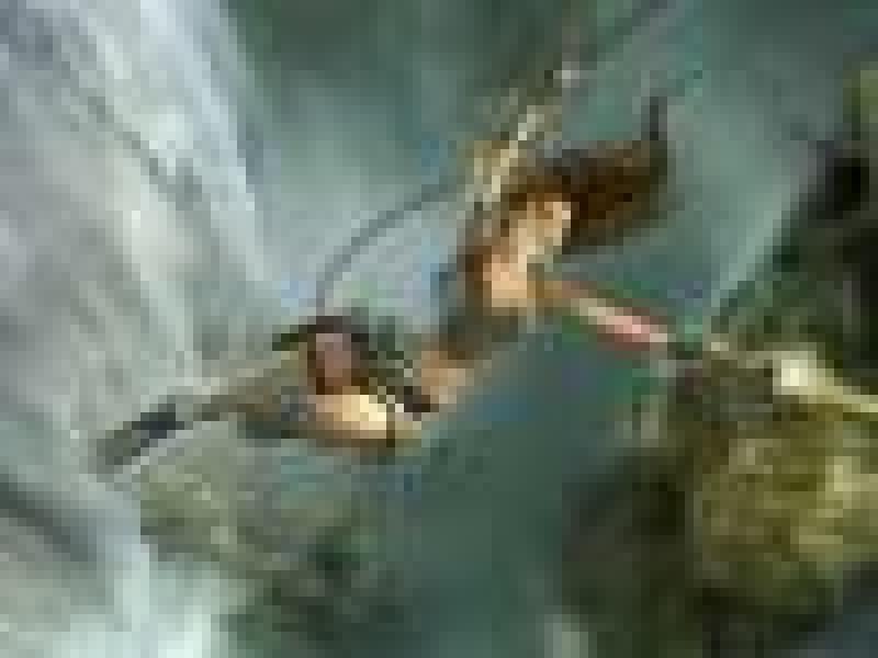 Tomb Raider: Legend на мобильных телефонах