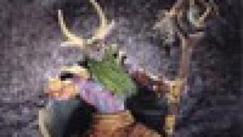 Warcraft 3: TFT «заговорил» по-новому