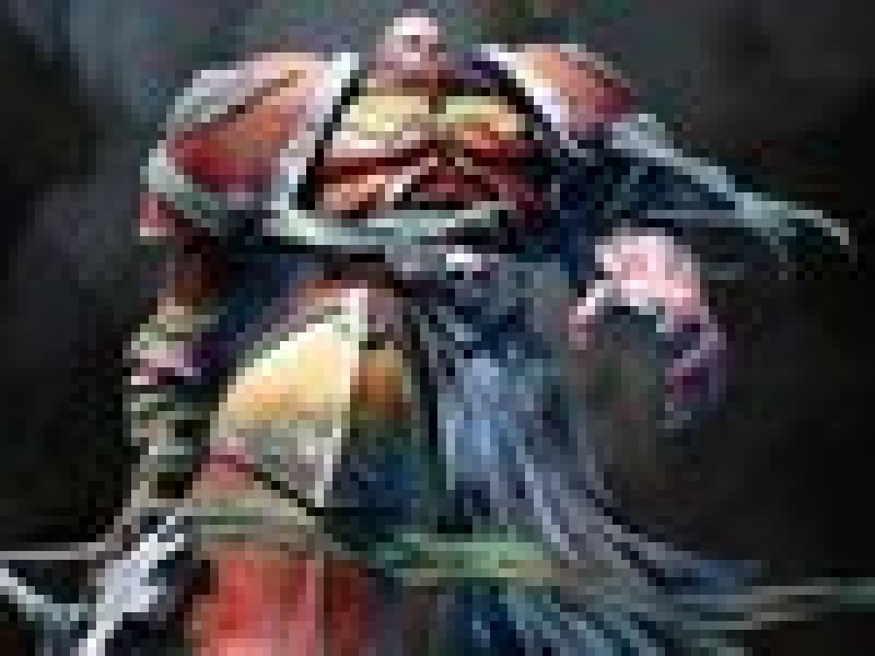 Warhammer 40.000: Dawn of War 2 – первая информация