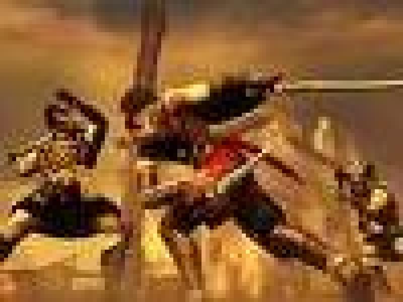 Prince of Persia: Prodigy вновь упомянута