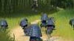 Mini Ninjas в продаже с 8-го сентября