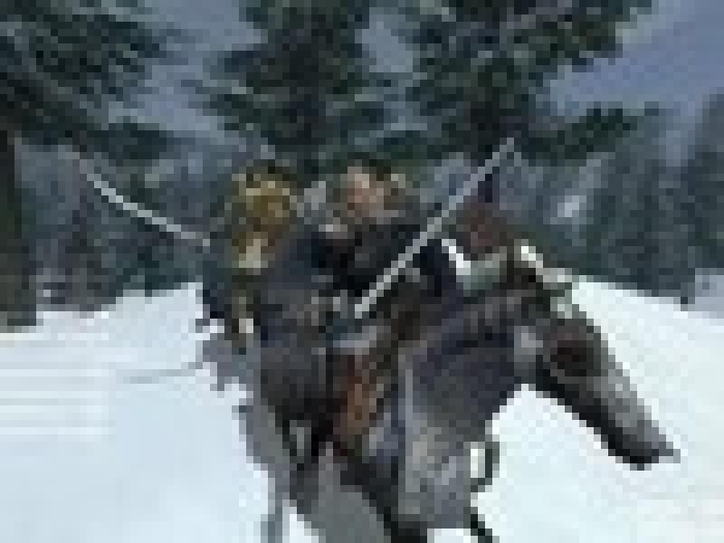 «1С» издаст Mount & Blade: Warband