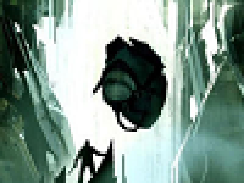 Half-Life: Episode 3 станет более «страшной»