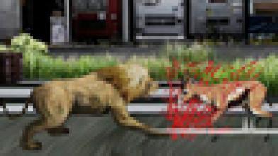 Tokyo Jungle поступит в продажу на территории Европы в конце сентября