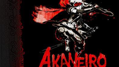 В Steam открылся ранний доступ к Akaneiro: Demon Hunters