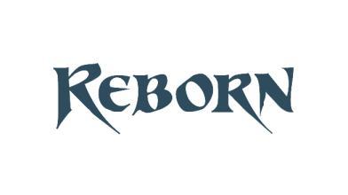 Завершено закрытое бета-тестирование игры Reborn