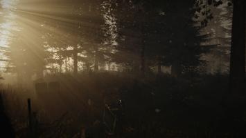 The Forest выйдет в Steam Early Access в ближайшие несколько месяцев