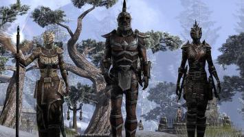The Elder Scrolls Online завлекает участников прошлогодней беты на специальный ивент