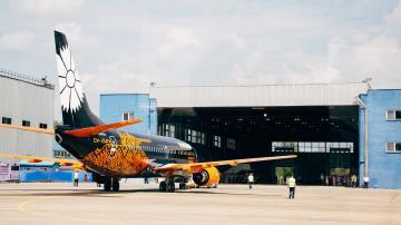 """Wargaming раскрасила """"Боинг"""": фото с презентации самолета в Минске"""
