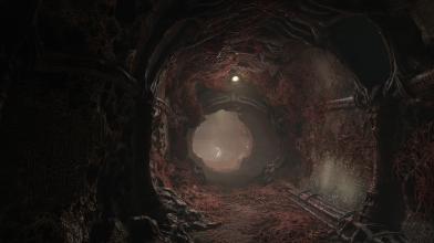 Благодаря Kickstarter сурвайвал-хоррор Scorn будет доступен и в виртуальной реальности