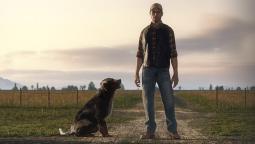 Farming Simulator 19 анонсирован в зрелищном кинематографичном трейлере