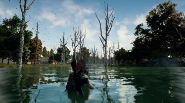 Nvidia заявила, что новый драйвер Game Ready повышает производительность в PUBG на 7%
