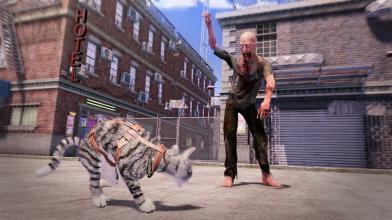Состоялся анонс самого реального кото-симулятора Max and Maya: Cat simulator