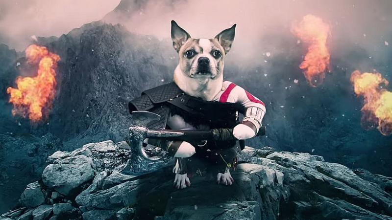 Эпичный трейлер новой Dog of War