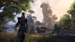 Состоялся релиз дополнения The Elder Scrolls Online: Summerset на консолях