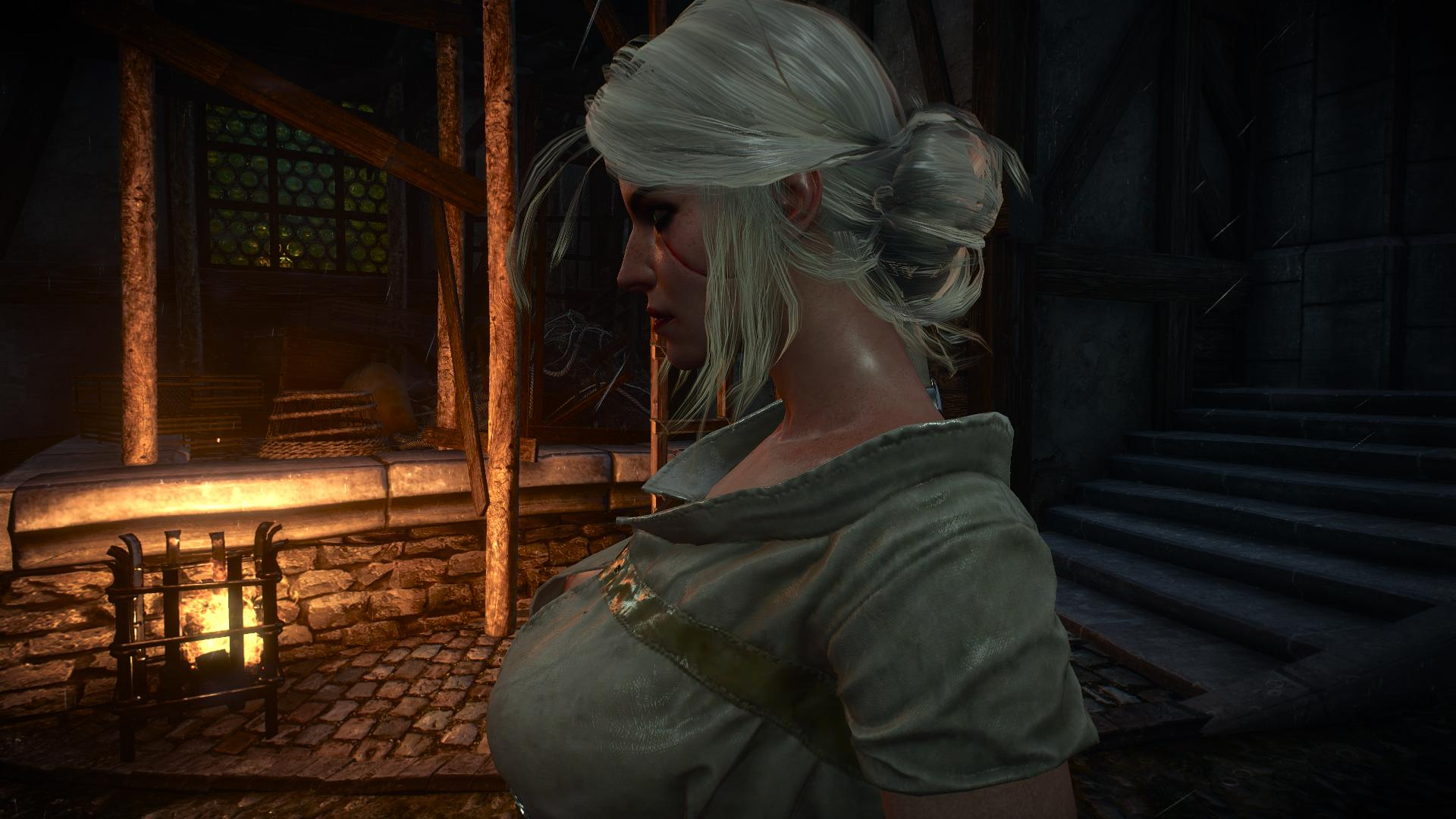 000111.Jpg - Witcher 3: Wild Hunt, the