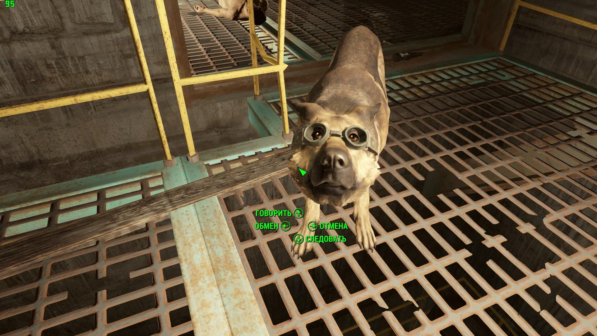 Доктор Собак - Fallout 4 Доктор, Собака