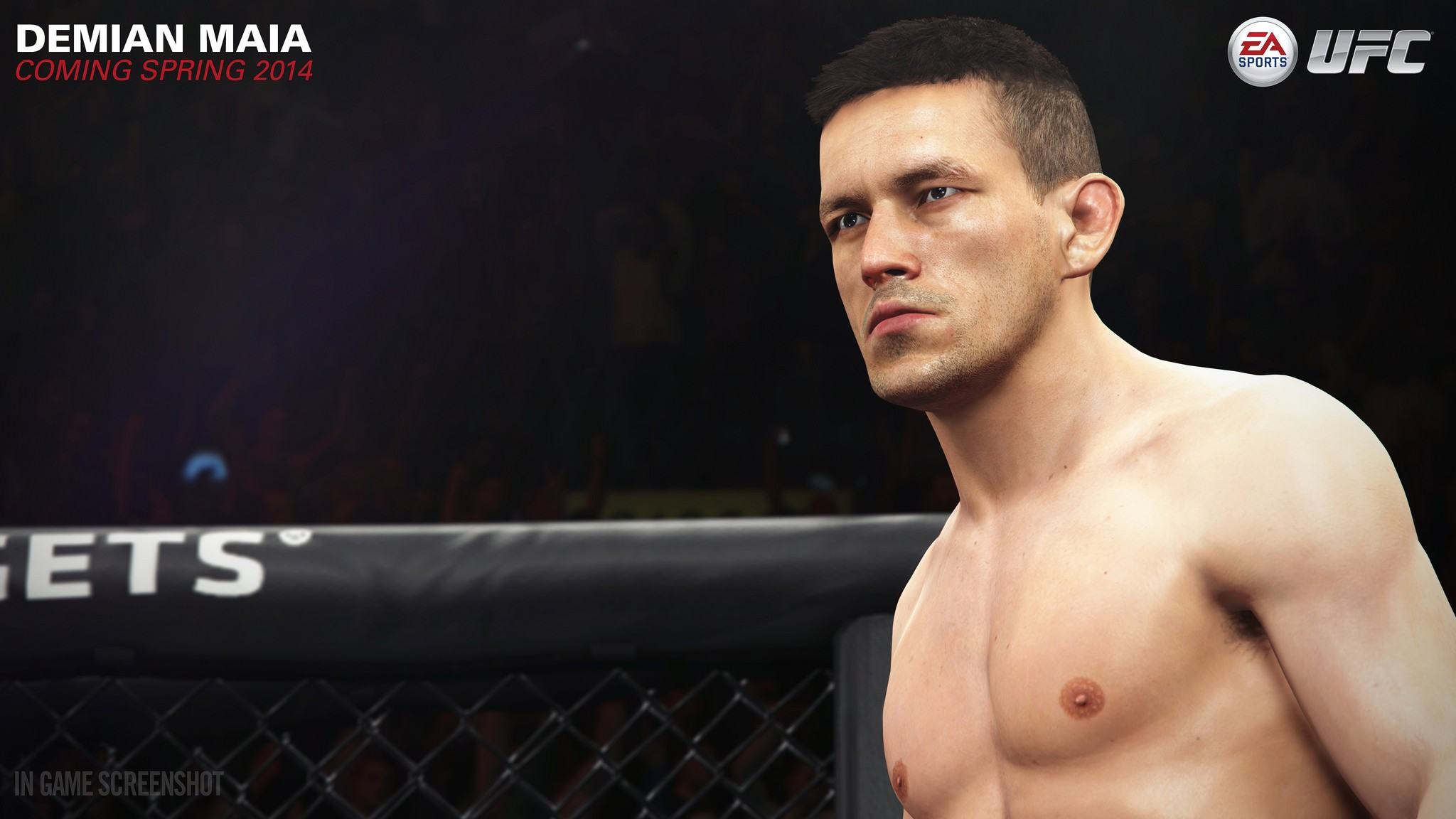 1393100045-media.jpg - EA Sports UFC