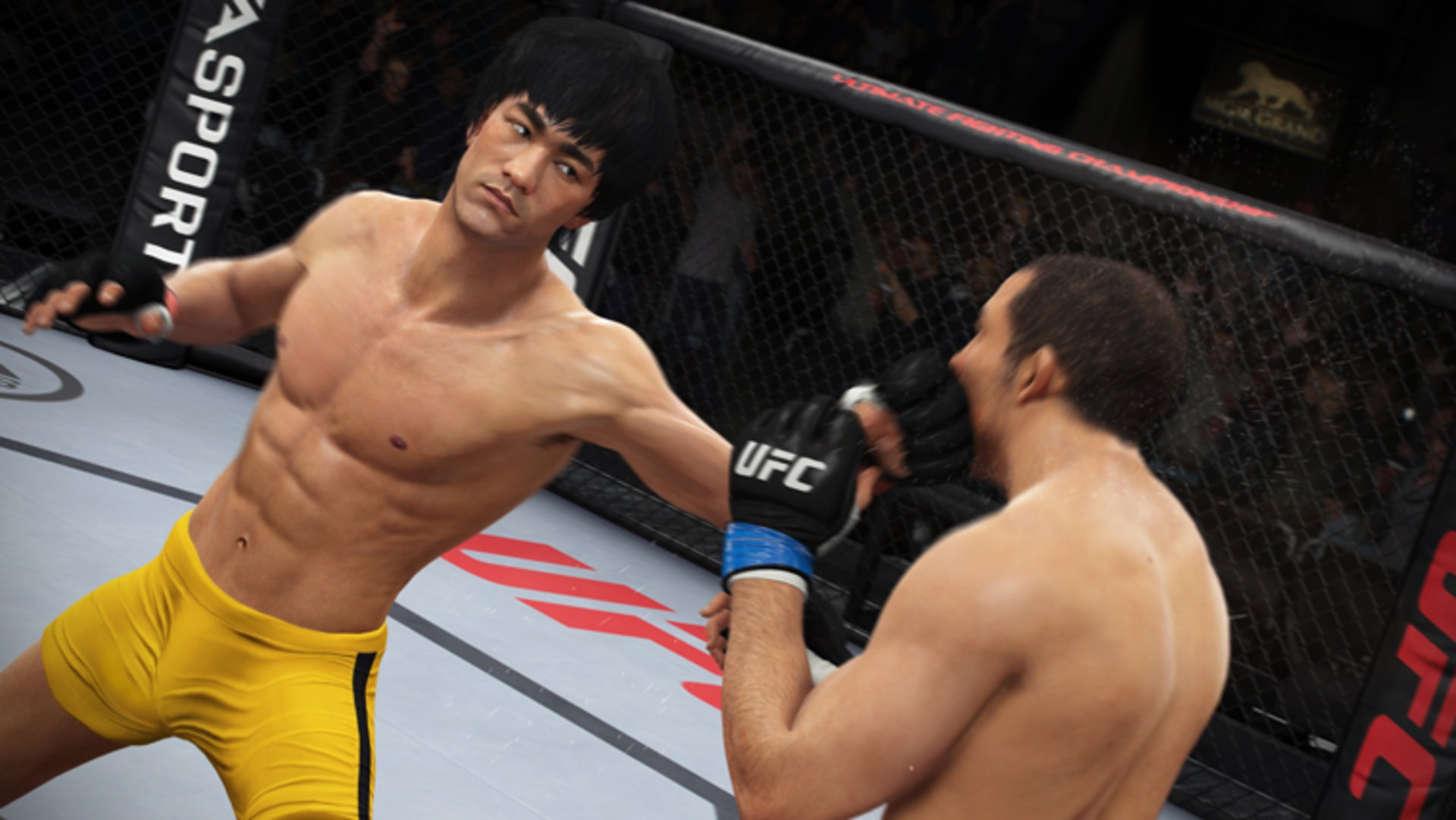 bruce-lee-ufc-peli-1920x1200.jpg - EA Sports UFC