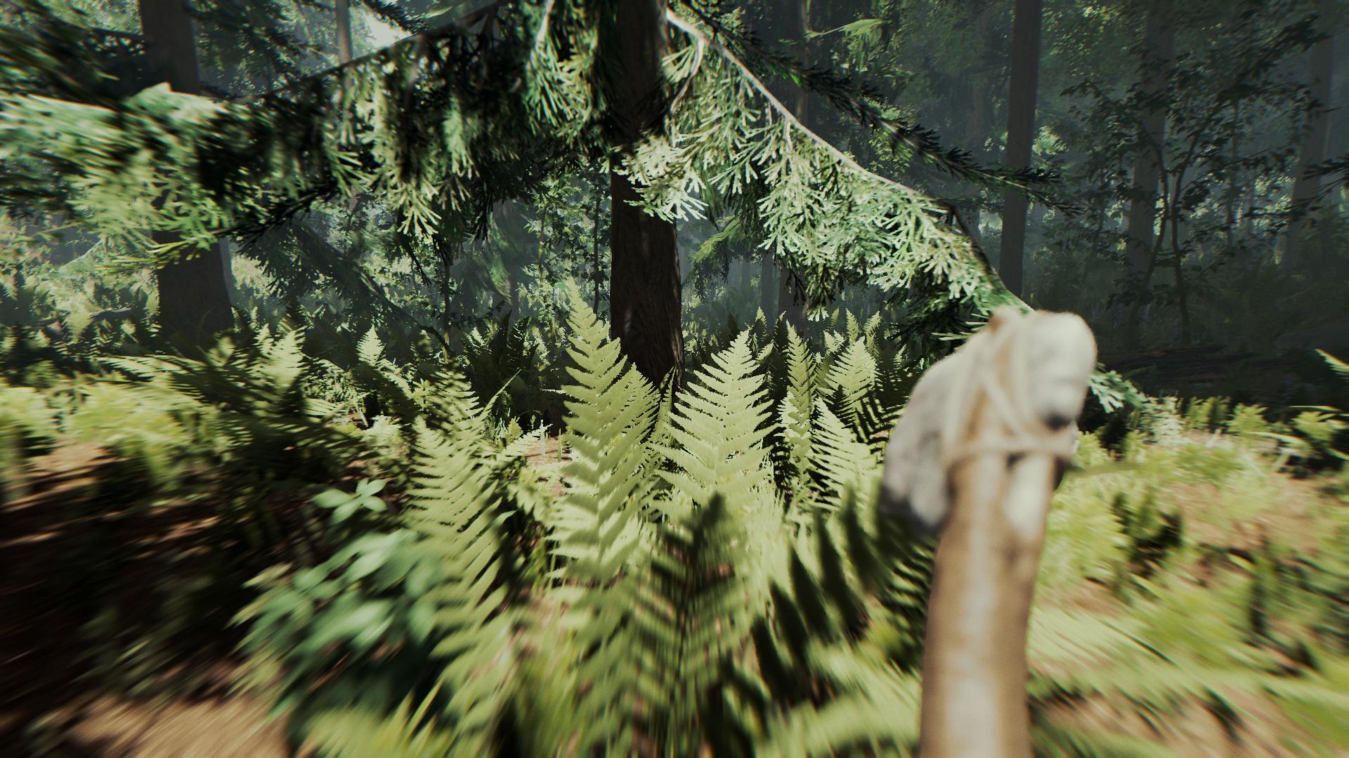 The forest il gioco