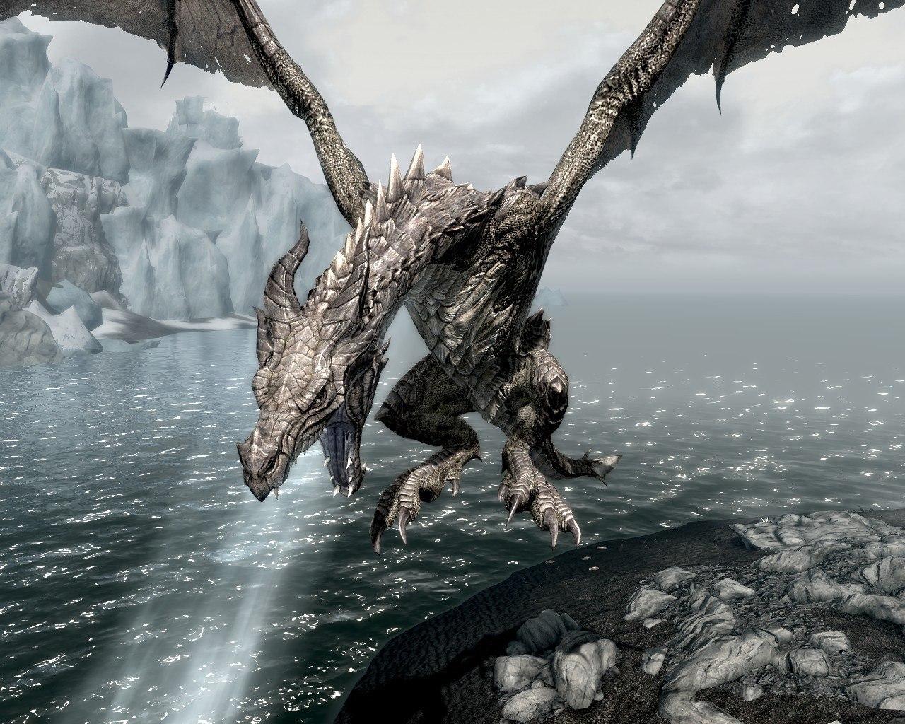 дракон скайрима картинки купить или