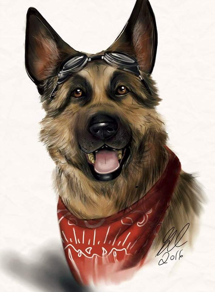 Fallout-фэндомы-Fallout-4-Fallout-art-2933178.jpeg - - Собака