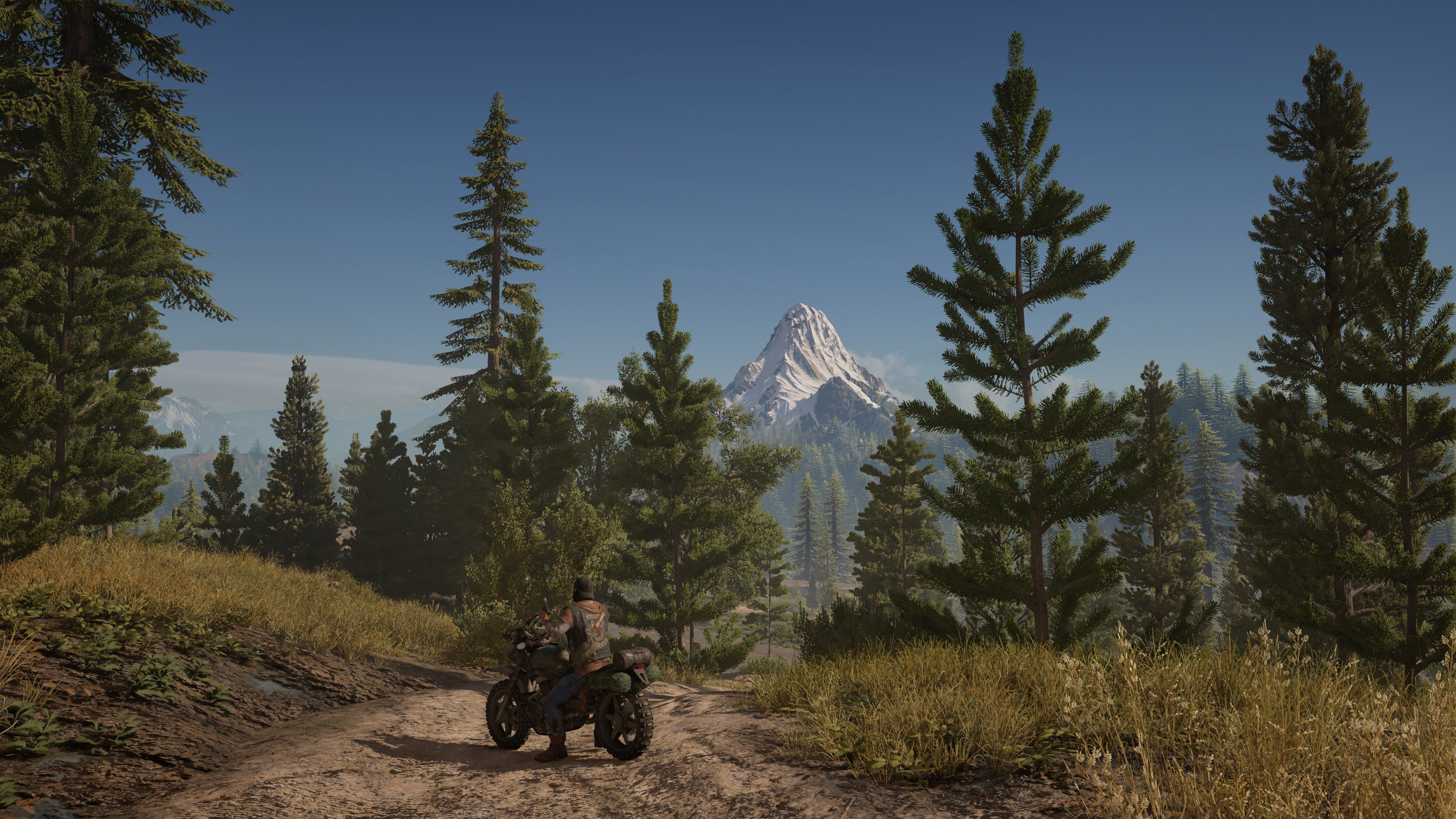 Days Gone - Days Gone мотоцикл