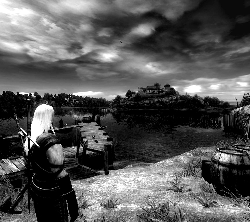 0_o - Witcher, the