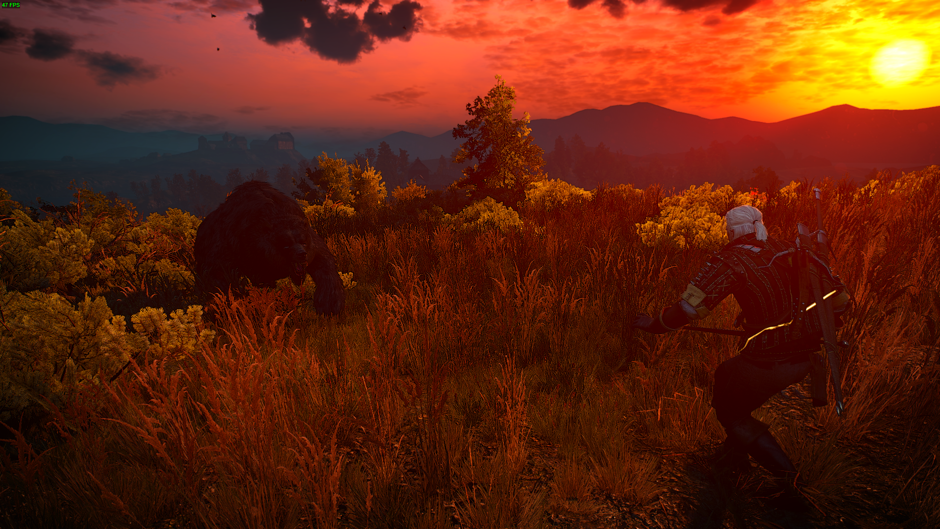 The Witcher 3 Screenshot 2017.05.22 - 17.32.49.44.png - Witcher 3: Wild Hunt, the
