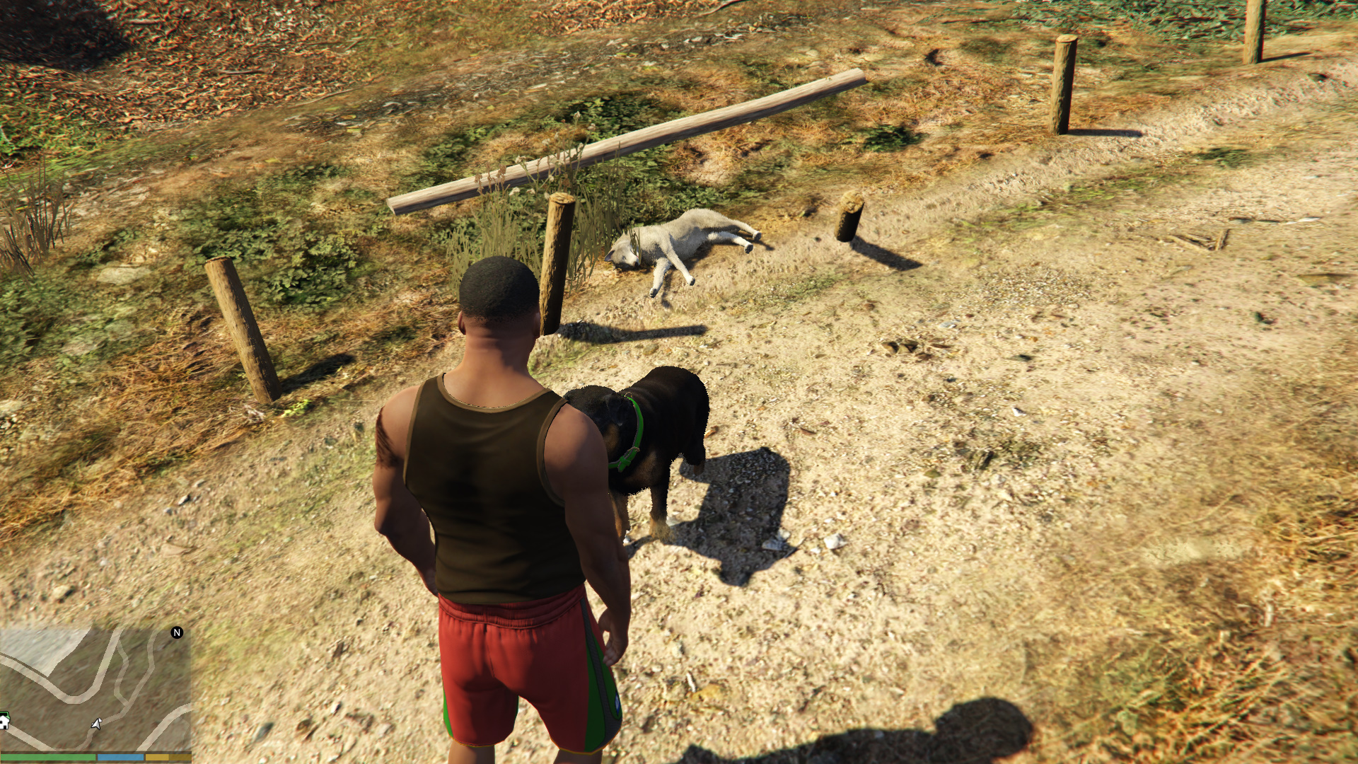 GTA5 2017-05-30 14-44-43-984.jpg - Grand Theft Auto 5