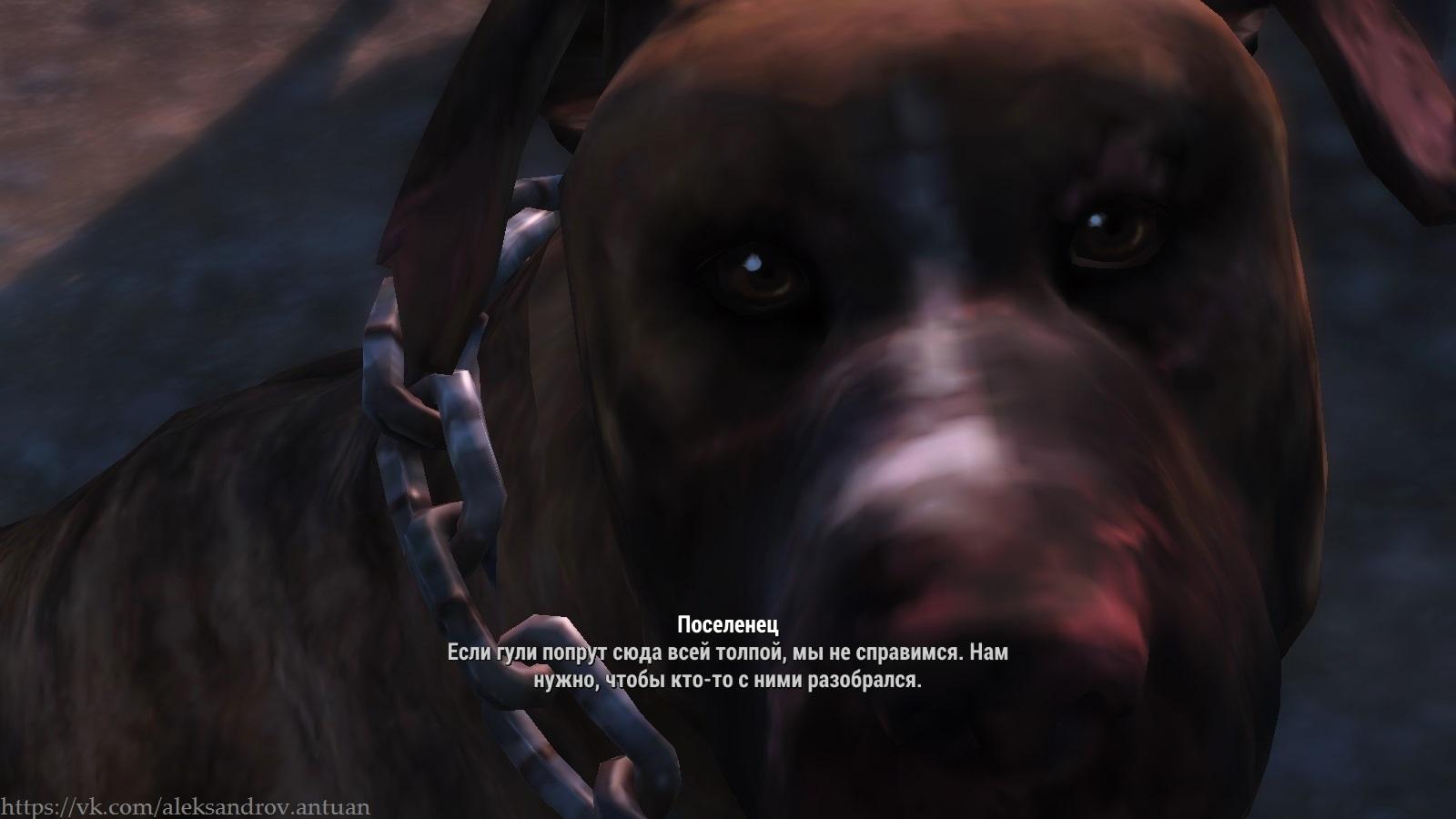 Собака-поселенец. Оборотень ? Скрин не фейковый ... #2 - Fallout 4 поселенец, собака