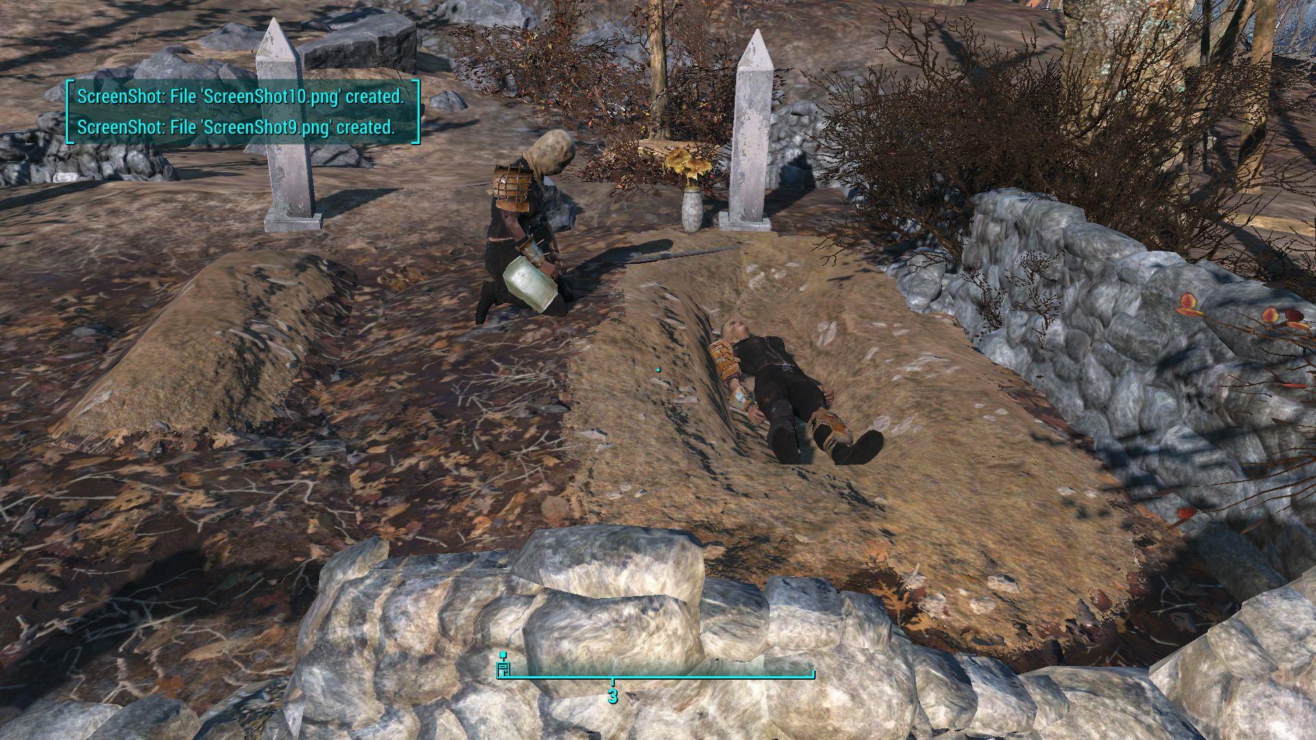 Спи с миром подруга..... - Fallout 4