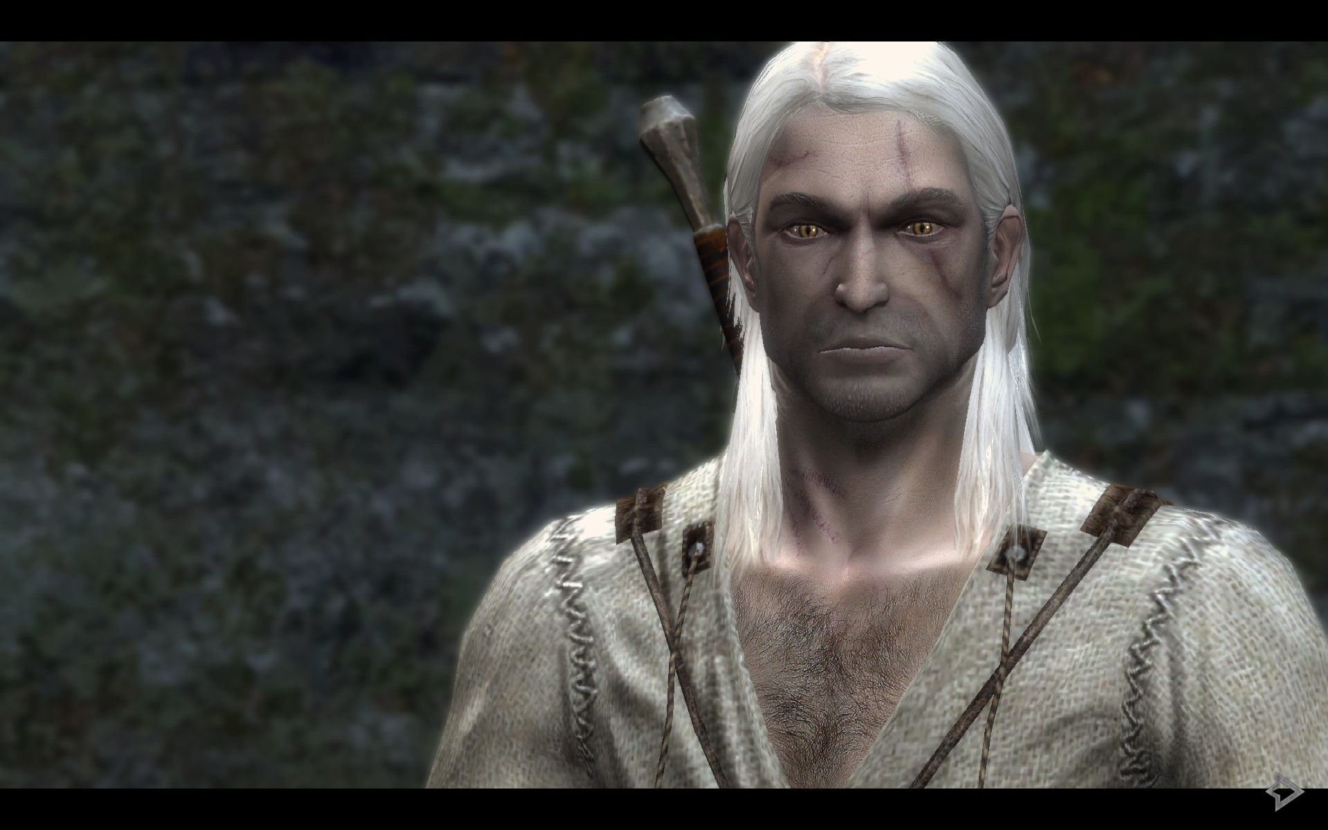 670-2-1400543694.jpg - Witcher, the