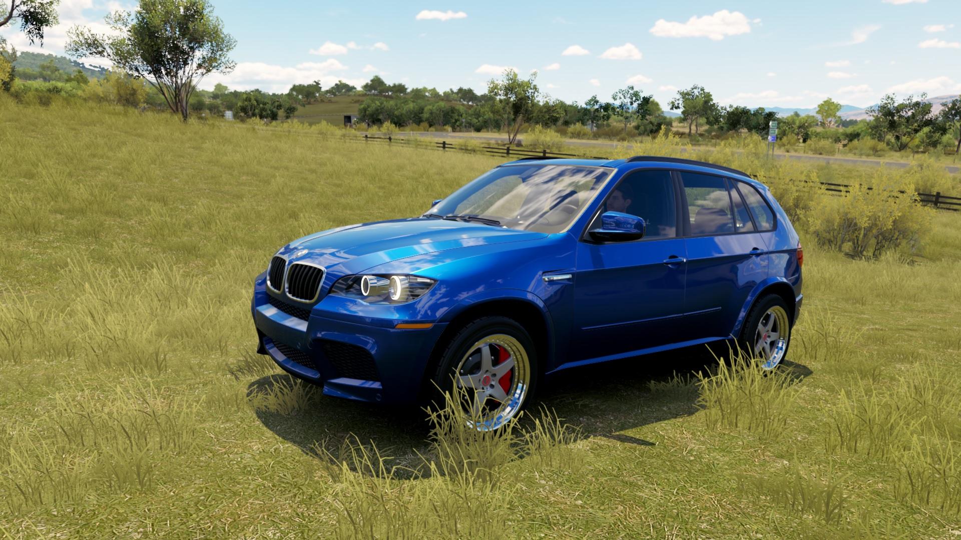BMW X5 - Forza Horizon 3