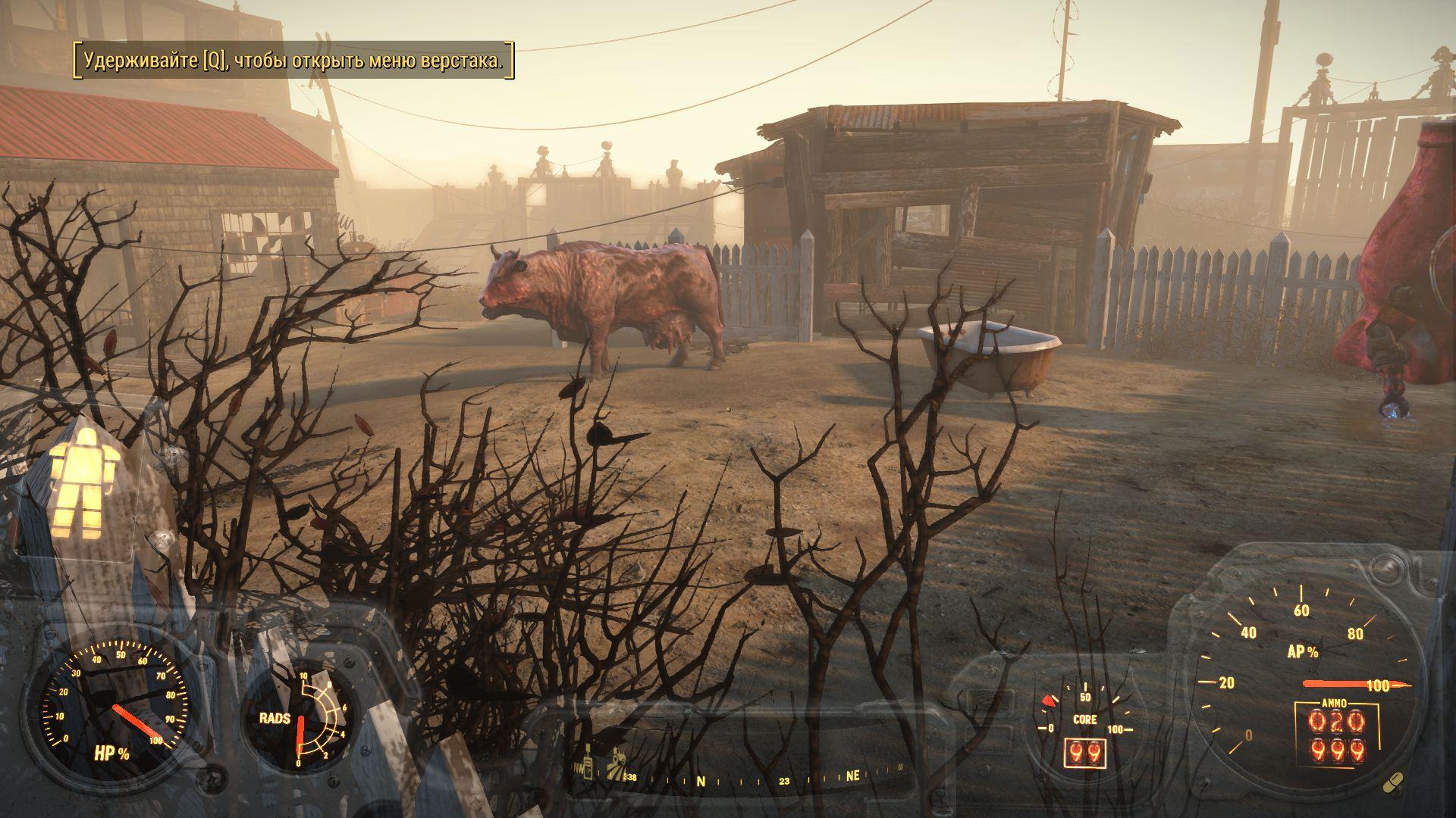 Здесь будет ферма по разведению браминов - Fallout 4 брамин, лужайка