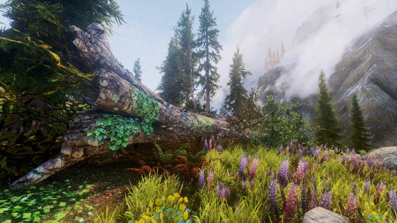 Флора - Elder Scrolls 5: Skyrim, the