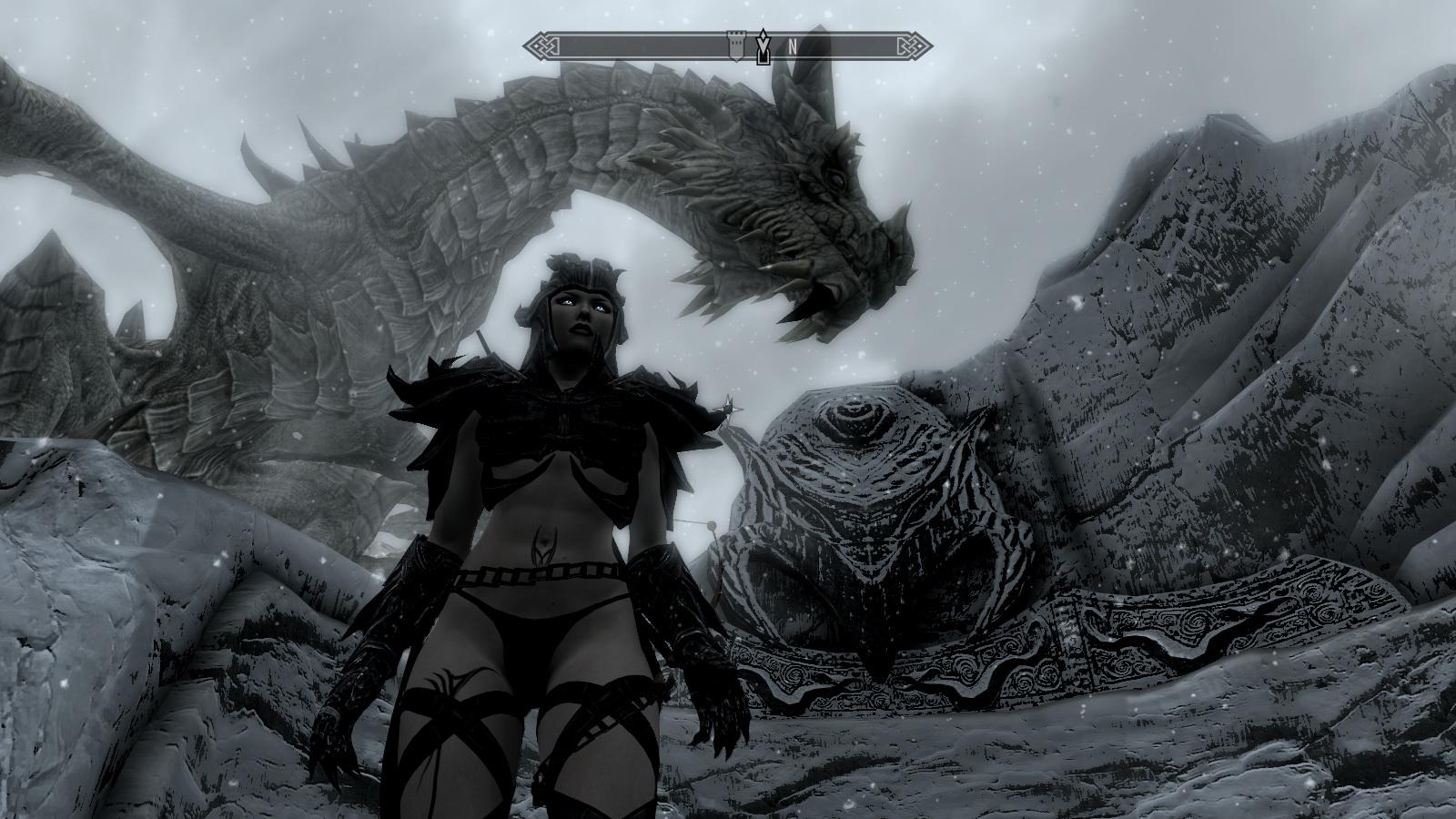 ScreenShot64.jpg - Elder Scrolls 5: Skyrim, the game girls