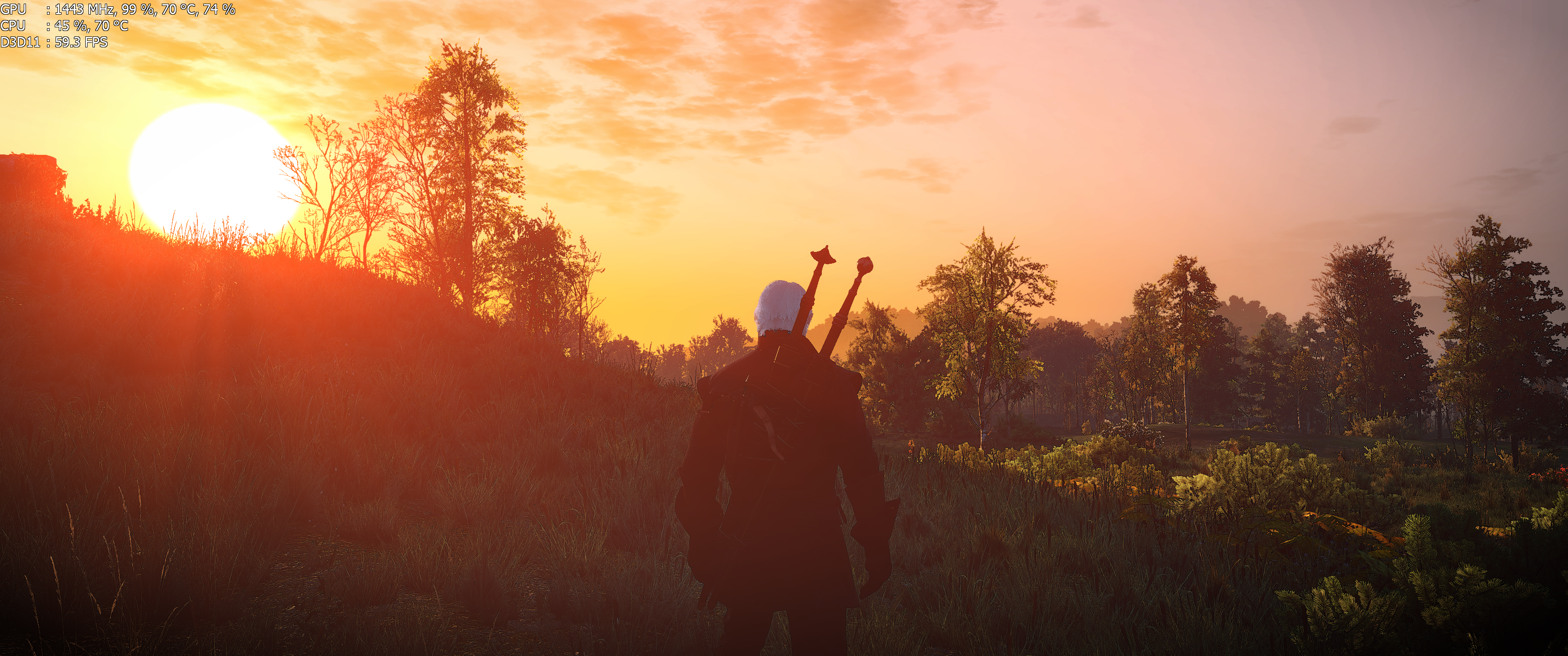 The Witcher 3 Screenshot 2017.11.18 - 20.54.43.21.png - Witcher 3: Wild Hunt, the