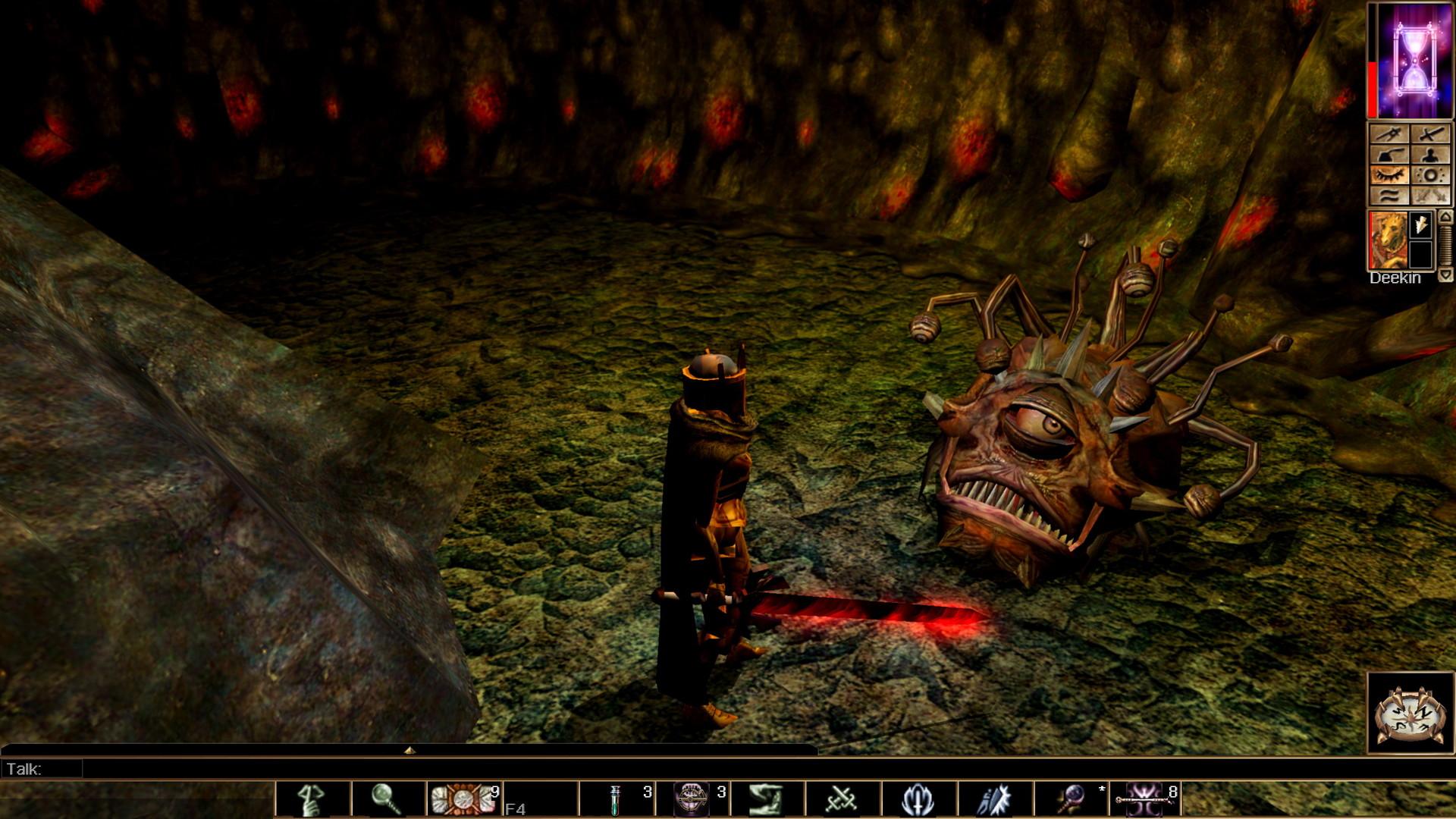 Neverwinter Nights: Enhanced Edition - Neverwinter Nights
