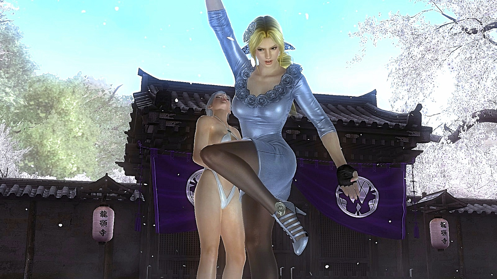 0 (7).jpg - Dead or Alive 5: Last Round