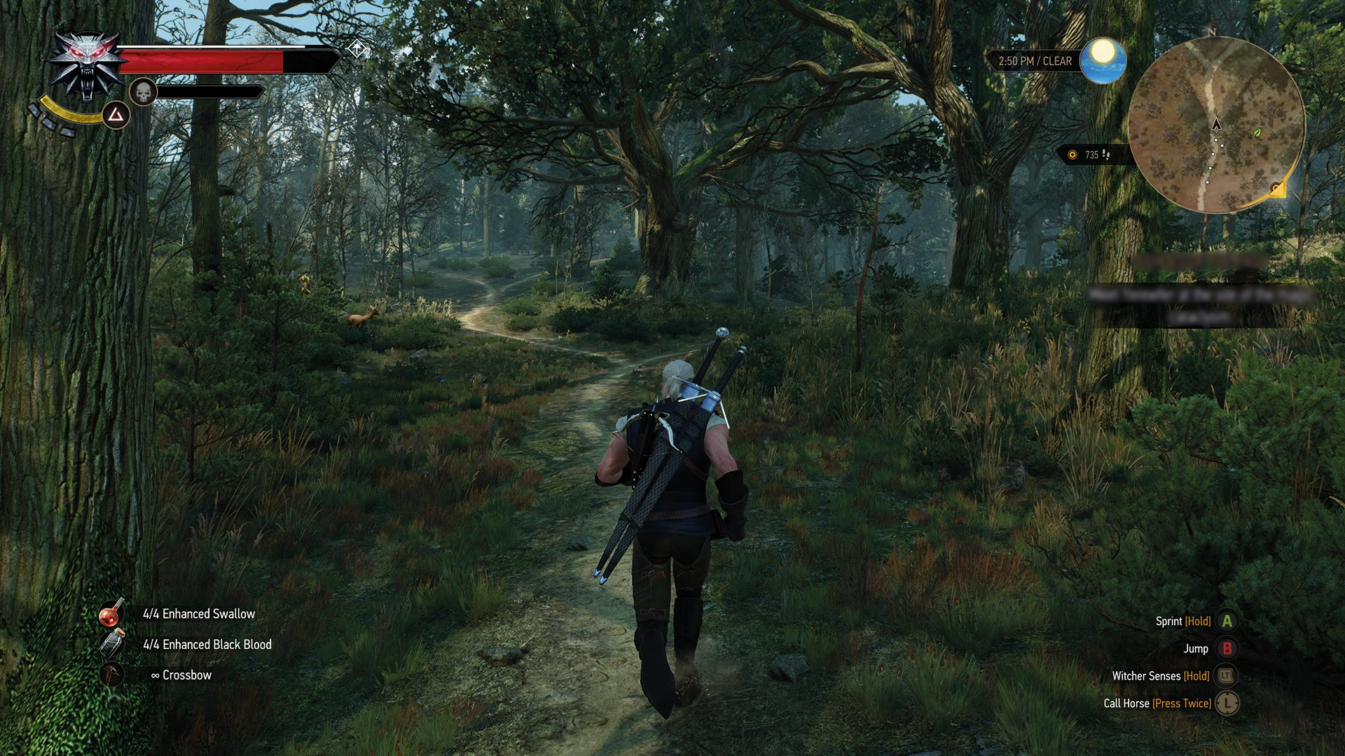 лес - Witcher 3: Wild Hunt, the
