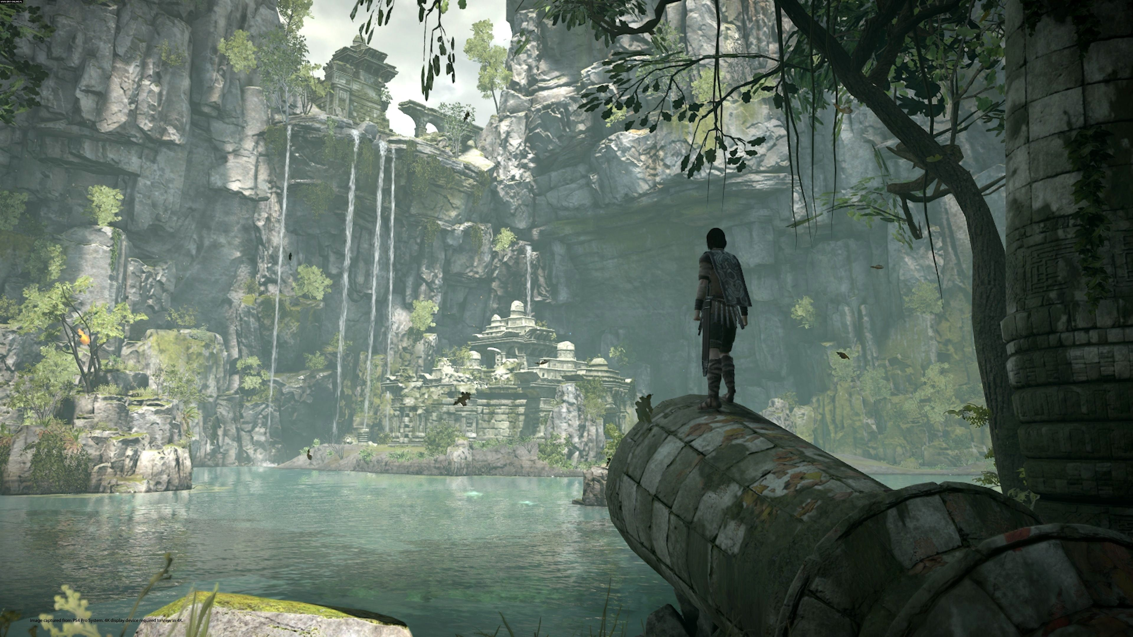 Shadow of the Colossus - Shadow of the Colossus Арт