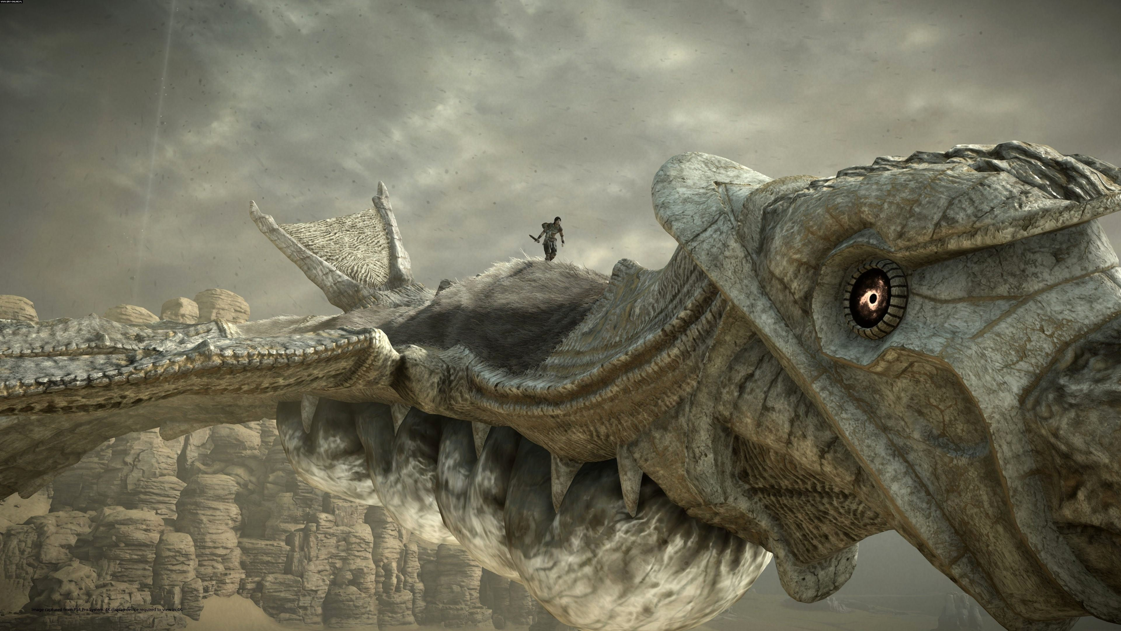 Shadow of the Colossus - Shadow of the Colossus Арт, Скриншот