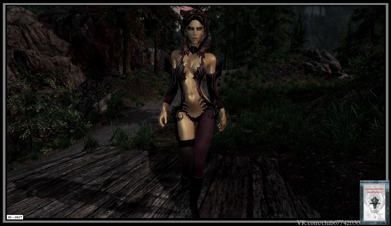 Колдуны Скайрима - Elder Scrolls 5: Skyrim, the колдун, маг, некромаг-оптимист, некромант