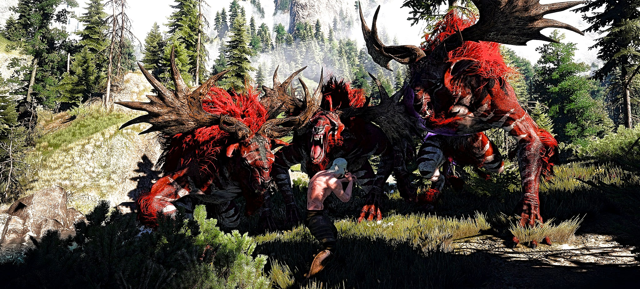 33644772TFGH23d (1).jpg - Witcher 3: Wild Hunt, the